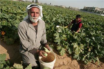 https://imemc.org/wp-content/uploads/2016/06/farmers-maan.jpg