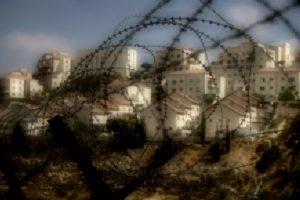 settlement-halo