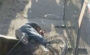 mohammad_rajabi_killed