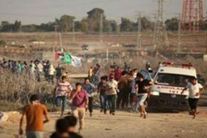 gaza_injured
