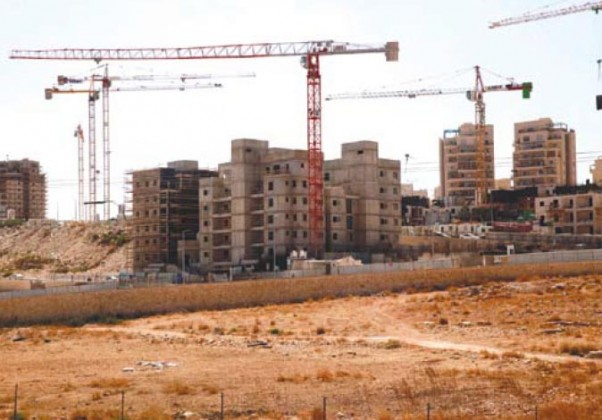 Jerusalem: Construction Works Ongoing in Abu Ghneim Mount Settlement Photo by: Mohammed Elayan