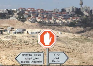 New construction in Ma'ale Adumim settlement (PCHR photo)