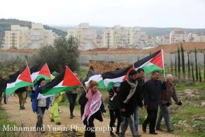 Bil'in protest (image by Mohammad Yassin)