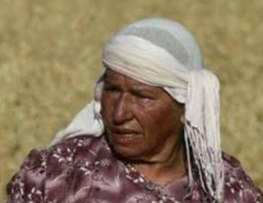 Hilwe Abu Ras, lit be Israeli colonial settler's car