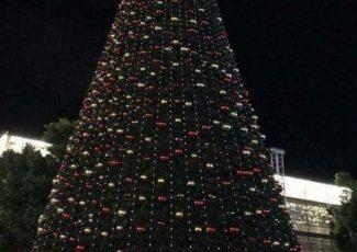 Bethlehem tree ( image from @naglaSalahEldin/Twitter)