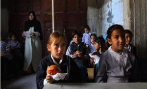 World Food Programme Cuts Aid to Palestine