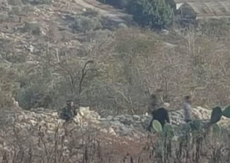 Israeli settlers invade southern Nablus (archive image)