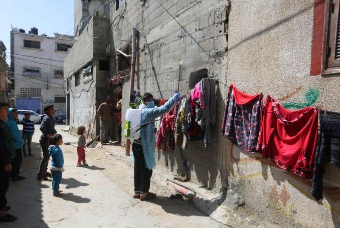 Fawzi Mahmoud, The Palestine Chronicle